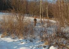polowanie 27-01-2018 (24)