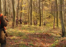 Polowanie Hubertowskie 04-11-2017 (64)